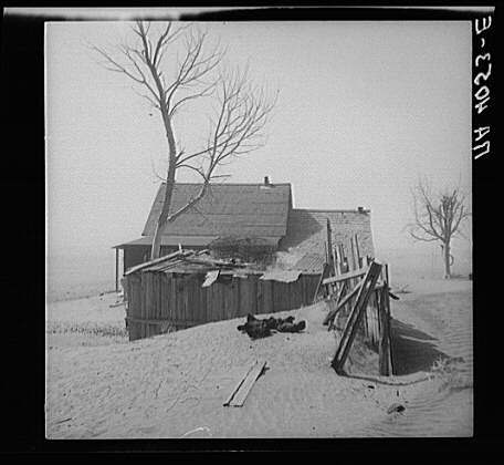 the cause of the dust bowl The dust bowl: an agricultural disaster caused by lack of knowledge - the dust bowl delivered an immense agricultural and economic blow to the great plains and exacerbated what was left of the us economy during the great depression (nasa).